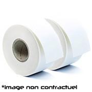 Epson Rouleau d'étiquettes continu Papier Normal 76 mm